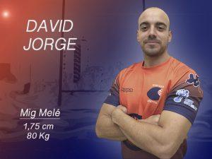 JORGE DAVID